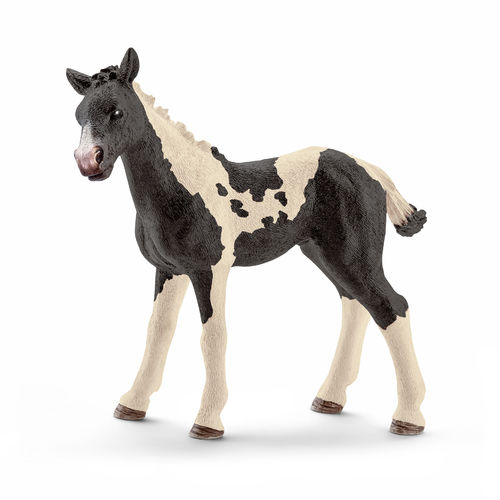 Schleich Farm World: Pinto Fohlen